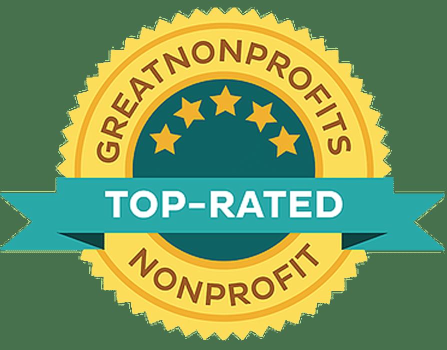 Great Nonprofits Lg Size